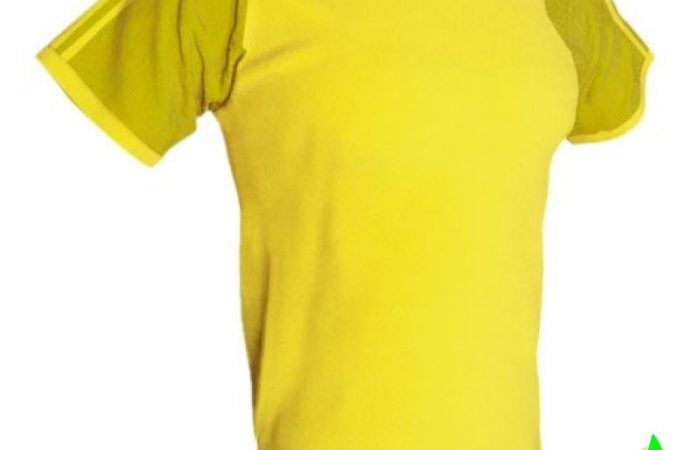 camiseta-tecnica-indoor-indoor-acqua-royal-0-2-2-800×800