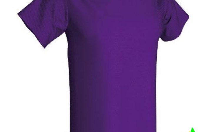 camiseta-tecnica-tandem-adulto-acqua-royal-a4397-0-2-2-800×800